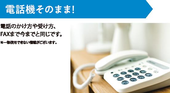 Ntt 固定 電話